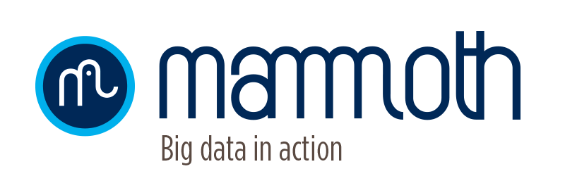 Mammoth Business Intelligence (BI) Integrated Communications Agency